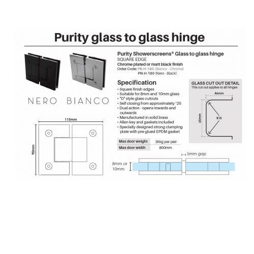 Purity glass to glass hinge